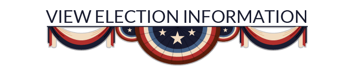 View Election Information